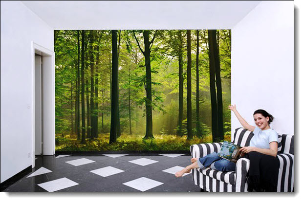 autumn forest 216 wall mural