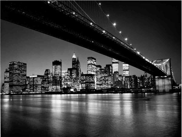 Manhattan skyline wall mural dm119 black and white for Black and white mural