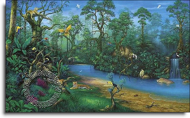 Jungle dreams c829 wall mural for Environmental graphics wall mural