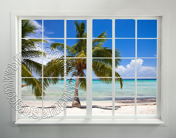 Palm beach window peel stick wall mural for Beach mural for wall