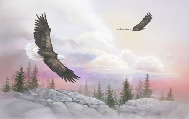 Soaring with eagles wall mural c818 by environmental for Eagle wall mural
