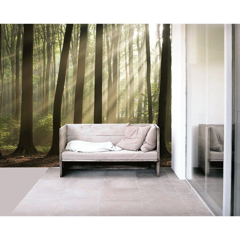 Misty forest paste the wall mural by brewster 99084 for Brewster wall mural
