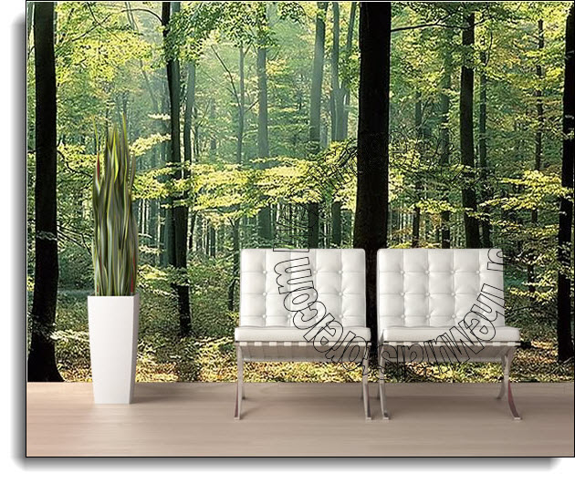 Enchanted Forest Wall Mural DS8033