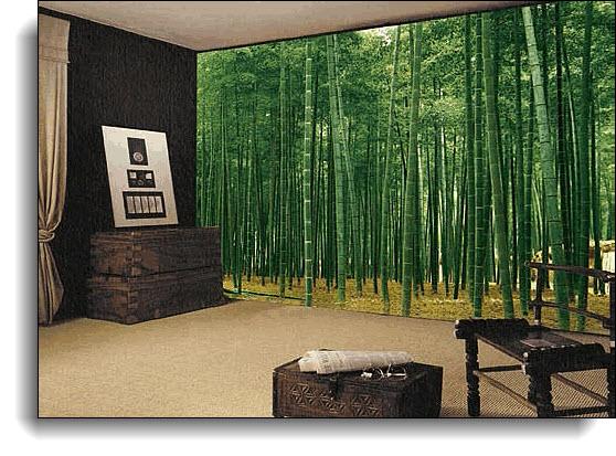 Bamboo Plantation Japan