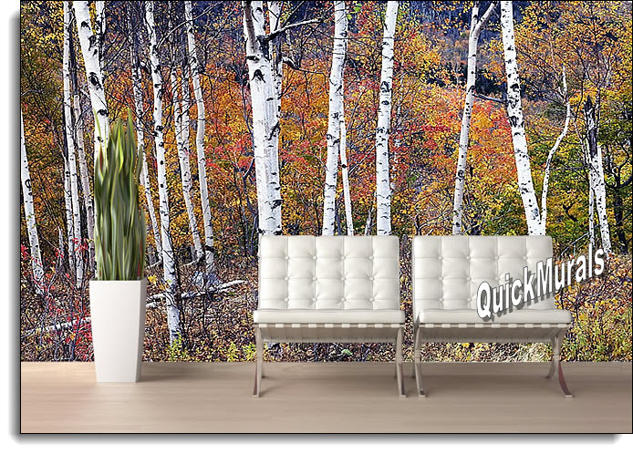 Birch Forest Peel & Stick Canvas Wall Mural roomsetting