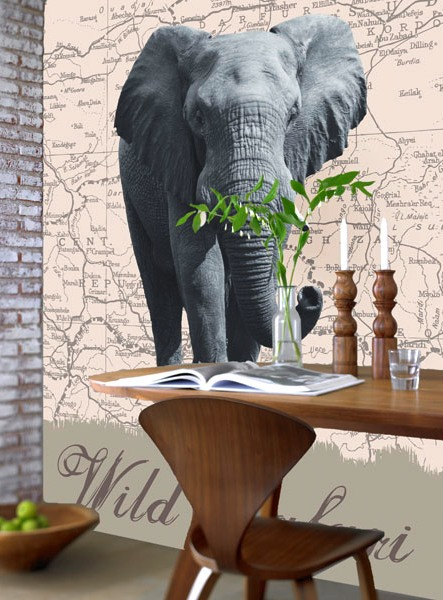 Wild Safari Wall Mural DM431
