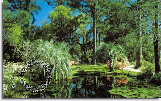 Tropical Garden Mural 4033