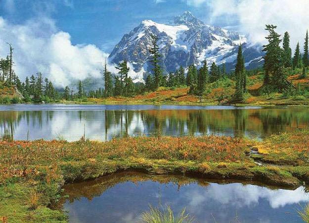 Mt Shuksan And Picture Lake Wall Mural