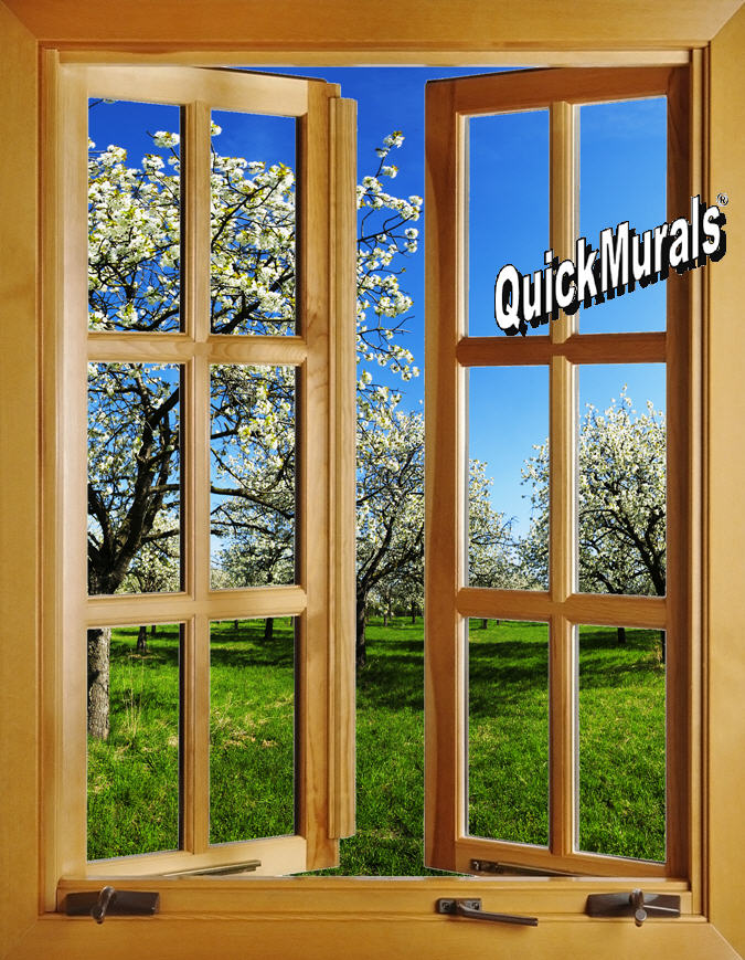 Apple blossom window open 1 piece peel stick wall mural for Apple boutique mural