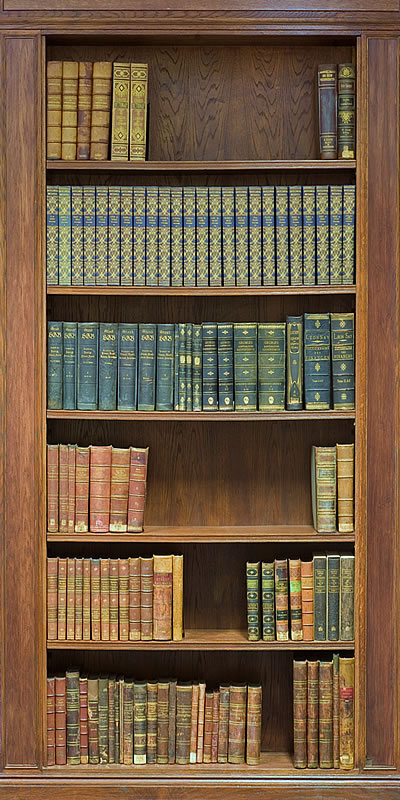 Bookcase mural for Bookshelf wall mural