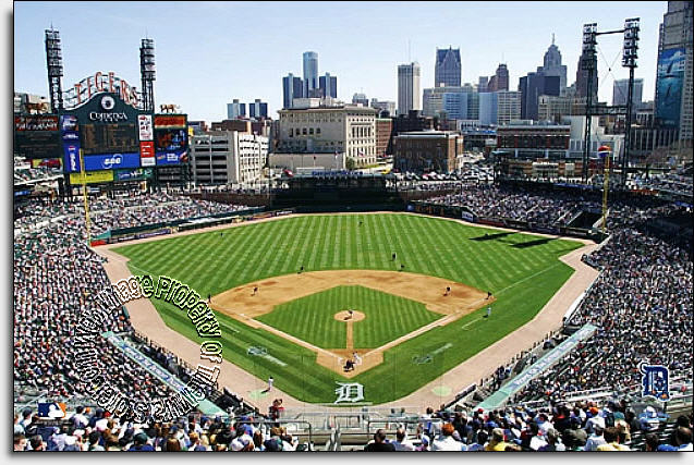 Detroit Tigers/Comerica Park Mural MSMLB DT CDS12005S
