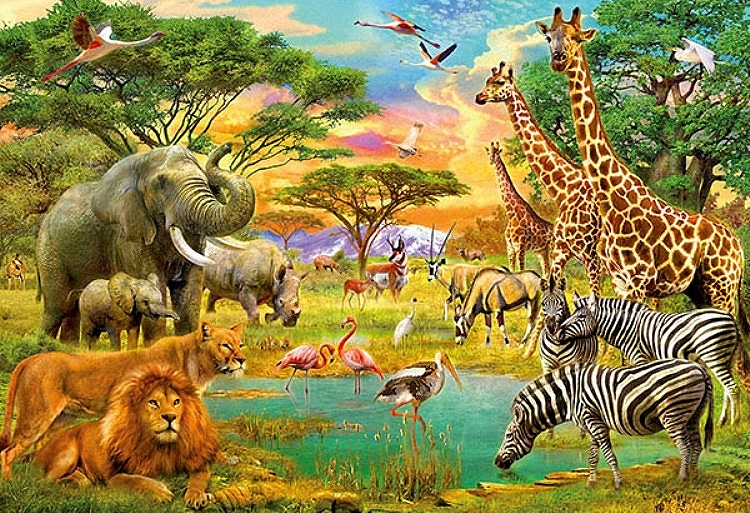 On Safari Wall Mural DM154