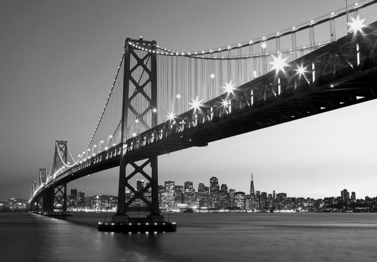 San Francisco Skyline Wall Mural DM134 by Ideal Decor