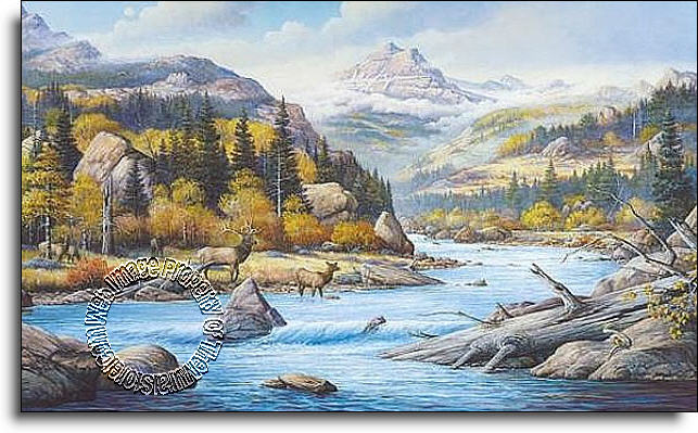 Elk country c827 wall mural for Environmental graphics giant world map wall mural