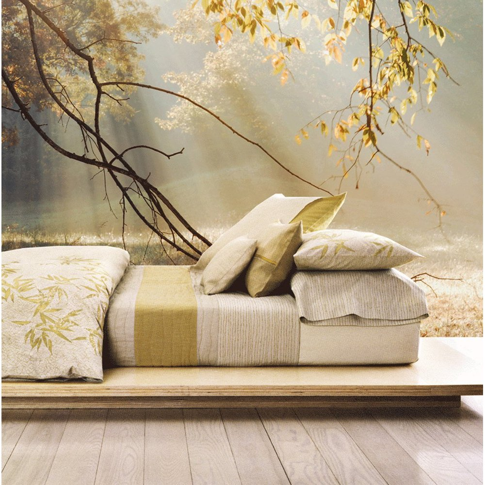 The Mural Store Full Size Large Wall Murals MORNING SUN RAYS