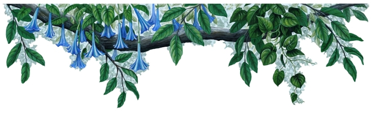 Blueflower Border Peel & Stick Applique 21150