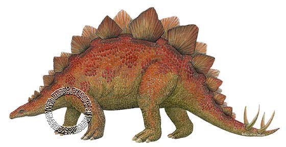 Stegosaurus Peel & Stick Applique 192005