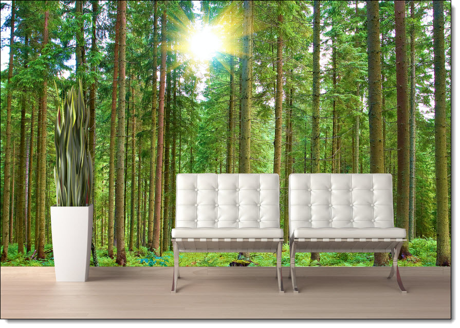 Morning Forest Peel & Stick Canvas Wall Mural
