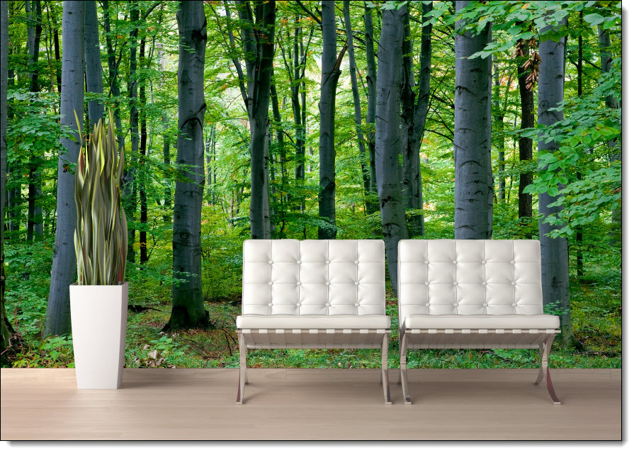 woodland forest peel and stick wall mural full size large wallwoodland forest peel \u0026 stick canvas wall mural