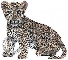 Leopard Cub Peel & Stick Applique 120515