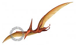 Pterodactyl Peel & Stick Applique 160961