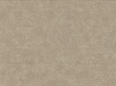 Clegane Light Brown Plaster Texture Wallpaper