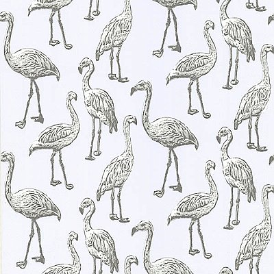Flamingo Salmon Graphic Wallpaper