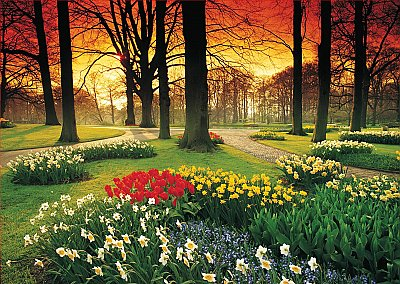 Floral Sunset Wall Mural