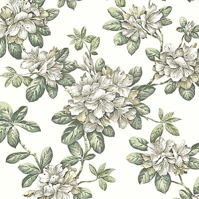 Bree Ivory Lily Trail Wallpaper