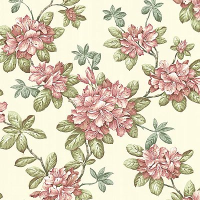 Bree Rose Lily Trail Wallpaper
