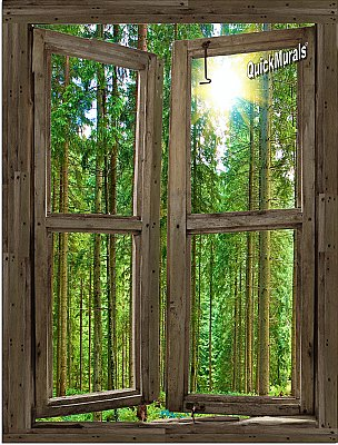 Country Cabin Window Peel and Stick (1 piece) Canvas Wall Mural