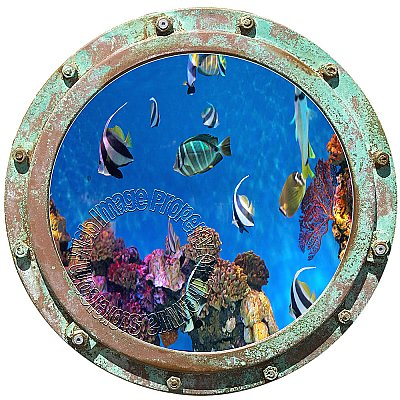 Undersea Porthole #2 Peel and Stick Canvas Wall Mural