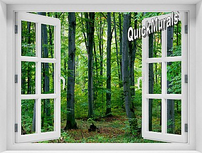 Woodland Forest Window Mural