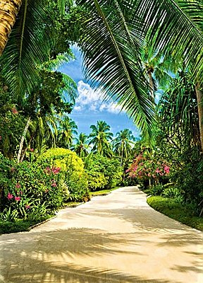 Tropical Pathway Wall Mural