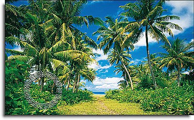Island In The Sun Wall Mural