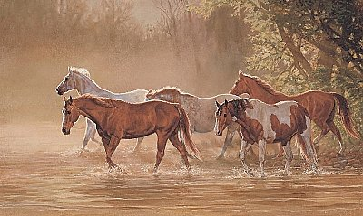 Misty River Mural LM7958MMP by York