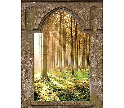 Mystic Forest Window Mural UMB91126