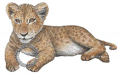 Lion Cub Peel & Stick Applique 110916