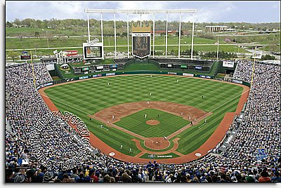 Kansas City Royals/Kauffman Stadium Mural MSMLB-KCR-CDS12005S