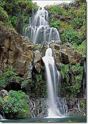 La Coca Falls Peel & Stick Canvas Wall Mural