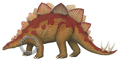 Stegosaurus Large Peel & Stick Applique 192007