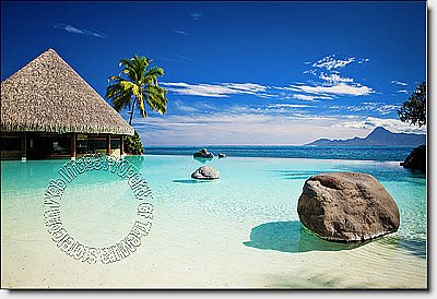 Turtle Island, Fiji Peel & Stick Canvas Wall Mural