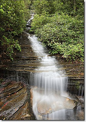 Waterfall Cachee Peel & Stick Canvas Wall Mural