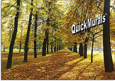 Autumn Park Mural Peel & Stick Canvas Wall Mural