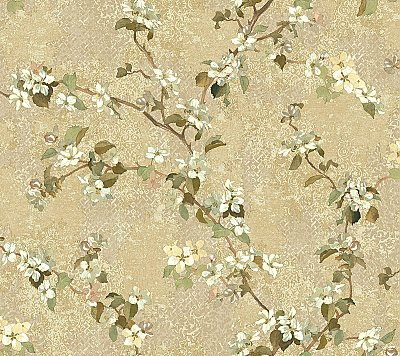 Apple Blossom Trail Wallpaper
