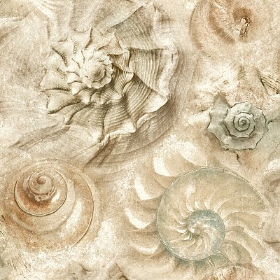 Opulent Shell Wallpaper
