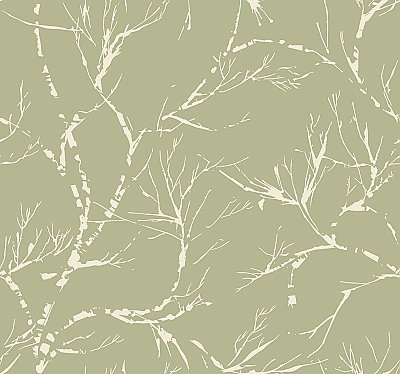 White Pine Wallpaper - Green
