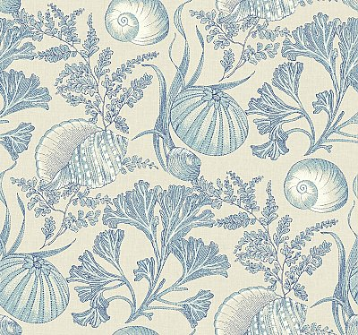 Coral Shells Wallpaper