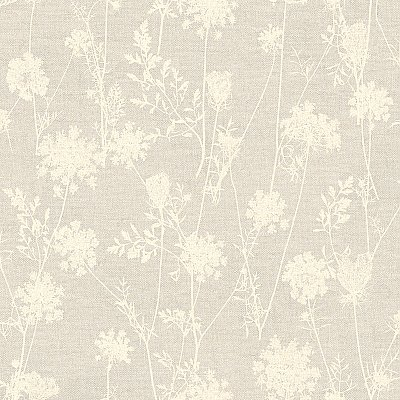Queen Annes Lace Wallpaper