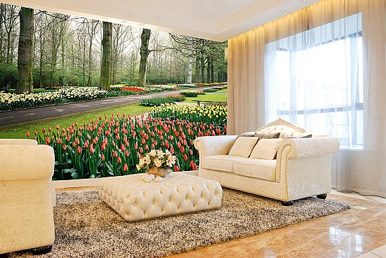Tulips Garden Netherlands Wall Mural DS8064 Roomsetting